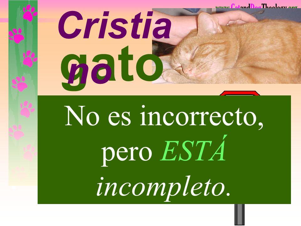 www.CatandDogTheology.org perspectiva de la adoración que tienen los gatos está incompleta? ¿En qué sentido la Actitud de Otro problema: