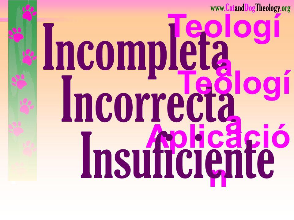www.CatandDogTheology.org Incompleta Teologí a Incorrecta Teologí a Aplicació n Insuficiente