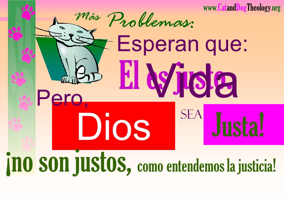 www.CatandDogTheology.org ¿Ven tendencias de gatos en su cristianismo????