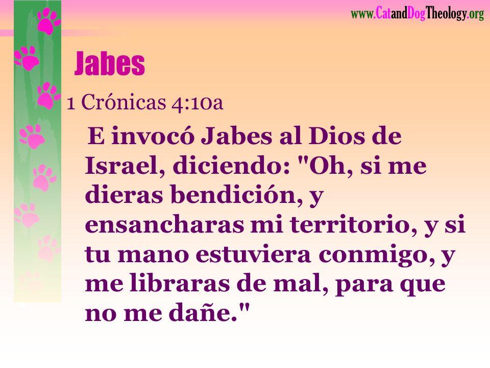 www.CatandDogTheology.org Vida # 1: Jabes
