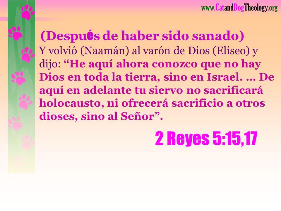 www.CatandDogTheology.org Esta Muchacha Participó de la gloria de Dios ¡Al amar a su enemigo!