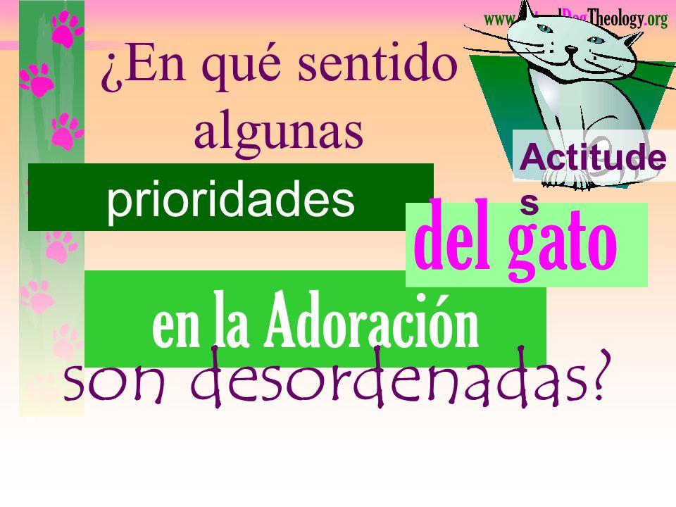 www.CatandDogTheology.org Prioridades Confundi r caracteriza la actitud de un