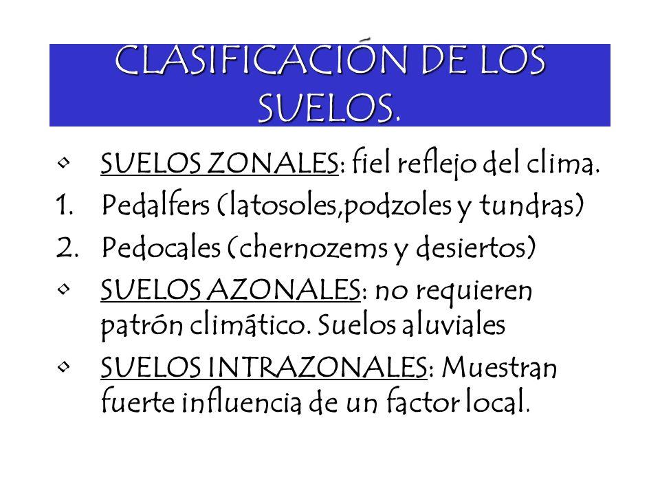 CLASIFICACIÓN DE LOS SUELOS CLASIFICACIÓN DE LOS SUELOS. SUELOS ZONALES: fiel reflejo del clima. 1.Pedalfers (latosoles,podzoles y tundras) 2.Pedocale