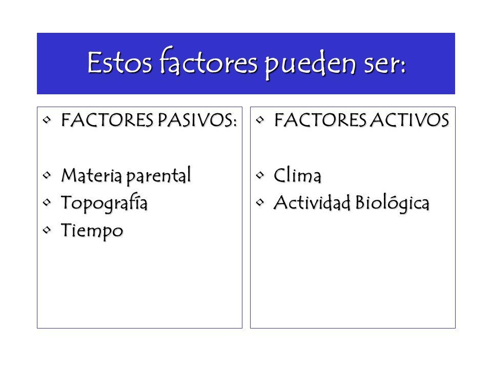 Estos factores pueden ser: FACTORES PASIVOS:FACTORES PASIVOS: Materia parentalMateria parental TopografíaTopografía TiempoTiempo FACTORES ACTIVOSFACTO