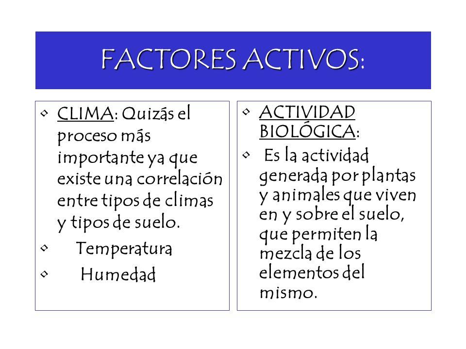 FACTORES ACTIVOS FACTORES ACTIVOS: CLIMA: Quizás el proceso más importante ya que existe una correlación entre tipos de climas y tipos de suelo. Tempe