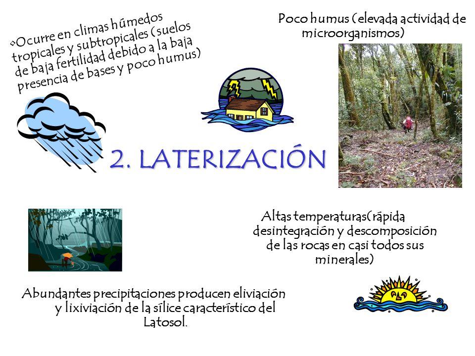 2. LATERIZACIÓN Ocurre en climas húmedos tropicales y subtropicales (suelos de baja fertilidad debido a la baja presencia de bases y poco humus) Altas