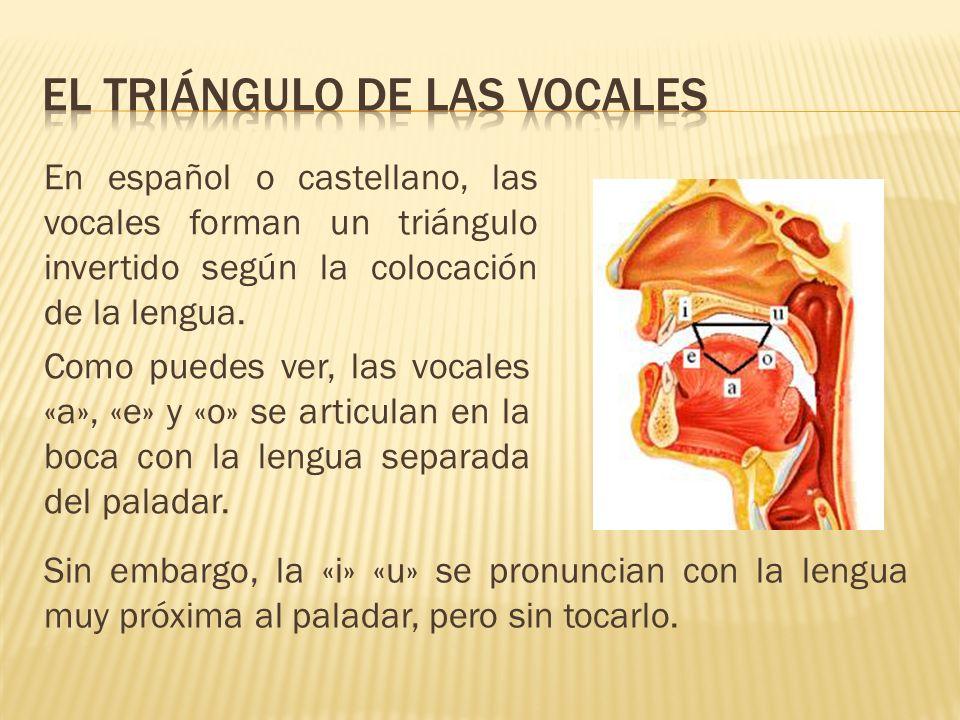 En español o castellano, las vocales forman un triángulo invertido según la colocación de la lengua. Como puedes ver, las vocales «a», «e» y «o» se ar