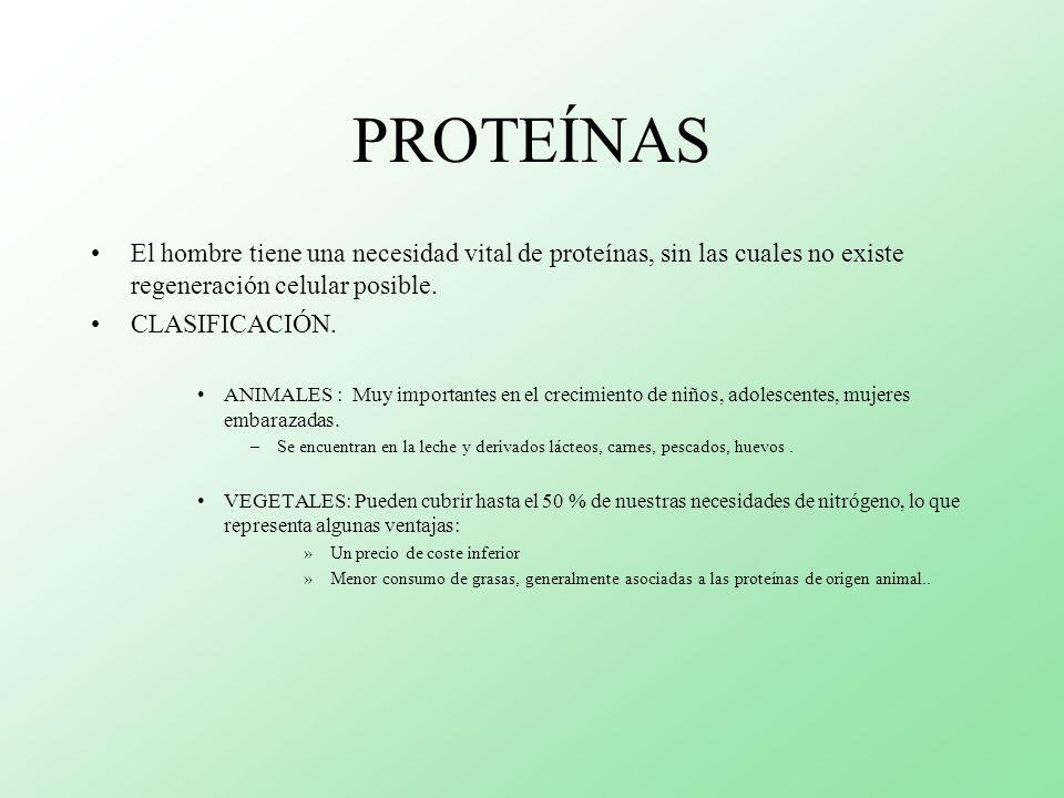 PROTEÍNAS El hombre tiene una necesidad vital de proteínas, sin las cuales no existe regeneración celular posible. CLASIFICACIÓN. ANIMALES : Muy impor