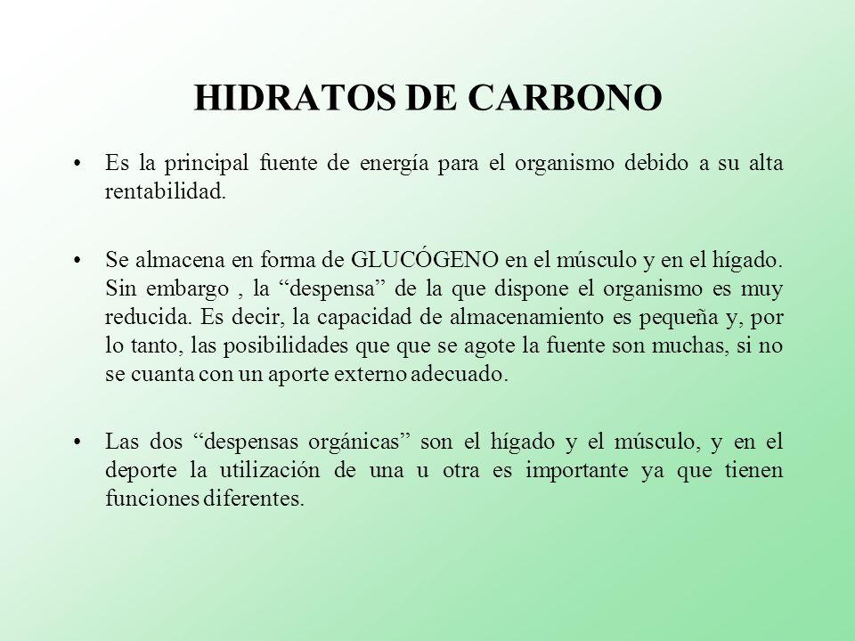 HIDRATOS DE CARBONO Es la principal fuente de energía para el organismo debido a su alta rentabilidad. Se almacena en forma de GLUCÓGENO en el músculo