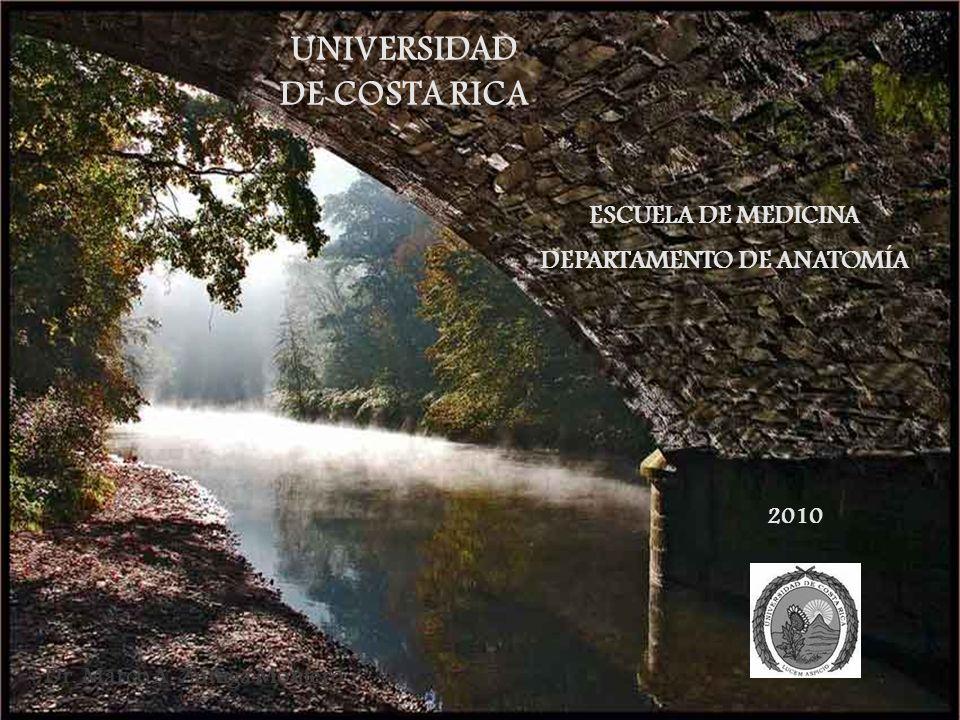 Dr. Marco A. Zúñiga Montero ESCUELA DE MEDICINA DEPARTAMENTO DE ANATOMÍA UNIVERSIDAD DE COSTA RICA 2010