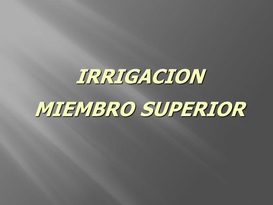 IRRIGACION MIEMBRO SUPERIOR