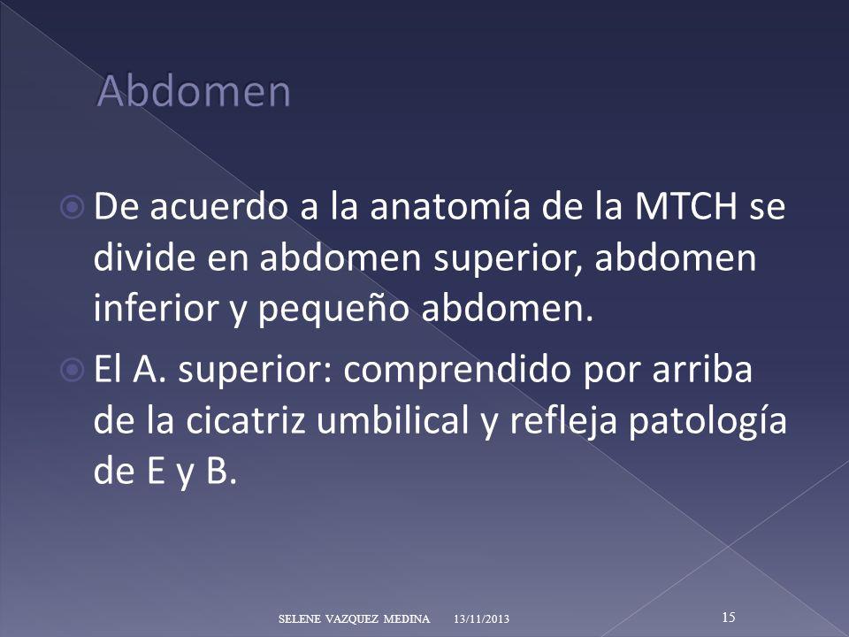 De acuerdo a la anatomía de la MTCH se divide en abdomen superior, abdomen inferior y pequeño abdomen. El A. superior: comprendido por arriba de la ci