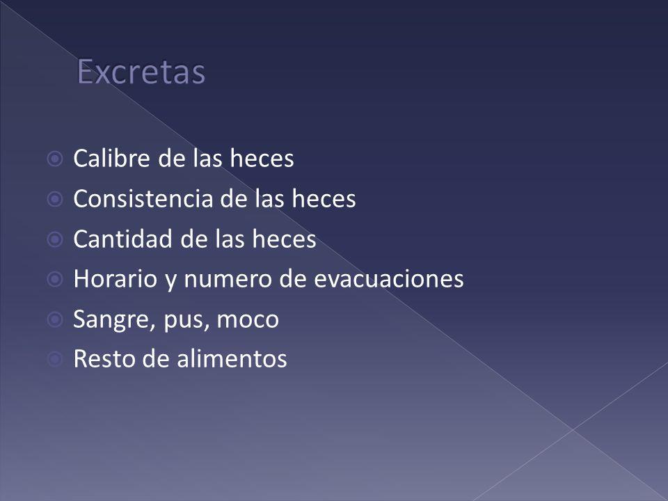 Calibre de las heces Consistencia de las heces Cantidad de las heces Horario y numero de evacuaciones Sangre, pus, moco Resto de alimentos