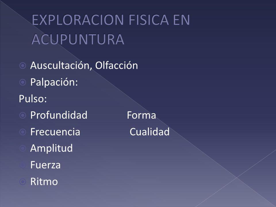 Auscultación, Olfacción Palpación: Pulso: Profundidad Forma Frecuencia Cualidad Amplitud Fuerza Ritmo