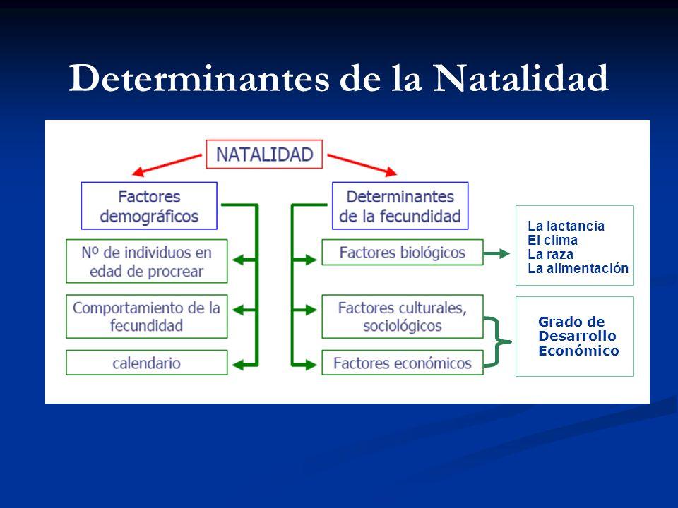 INDICADORES DEMOGRÁFICOS Tasa Bruta de Natalidad Es el cociente entre el número de nacimientos ocurridos durante un año en una población y el tamaño p