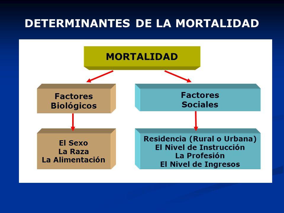 INDICADORES DEMOGRÁFICOS Tasa Bruta de Mortalidad Es el cociente entre el número de defunciones ocurridas durante un año en una población y el tamaño
