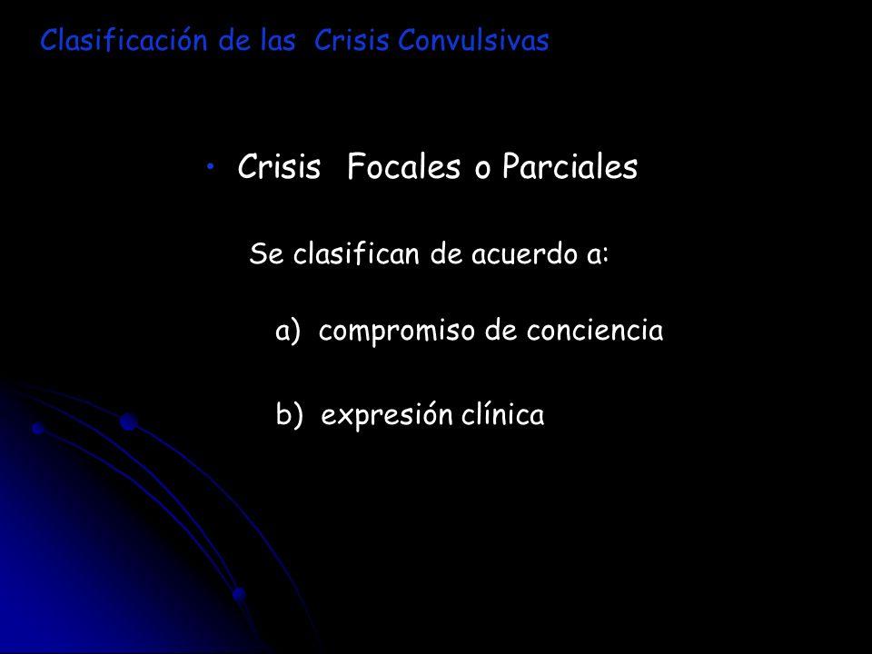 Crisis Focales o Parciales Se clasifican de acuerdo a: a) compromiso de conciencia b) expresión clínica Clasificación de las Crisis Convulsivas