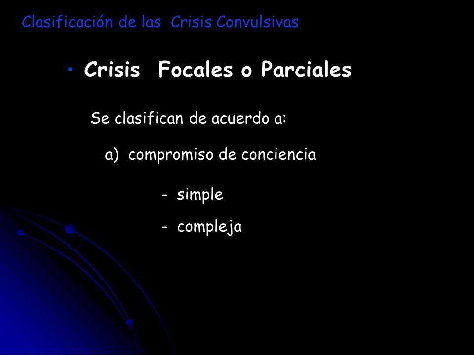Crisis Focales o Parciales Se clasifican de acuerdo a: a) compromiso de conciencia - simple - compleja Clasificación de las Crisis Convulsivas