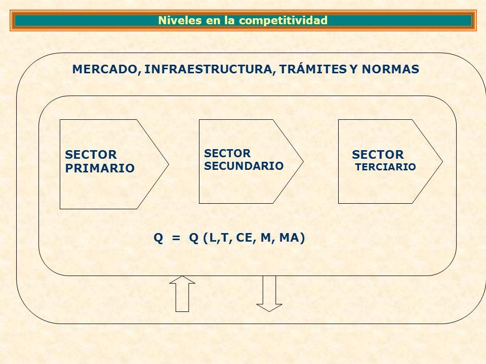 MERCADO, INFRAESTRUCTURA, TRÁMITES Y NORMAS SECTOR PRIMARIO SECTOR SECUNDARIO SECTOR TERCIARIO Q = Q (L,T, CE, M, MA) Niveles en la competitividad