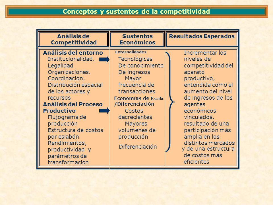 Conceptos y sustentos de la competitividad y de una estructura de costos más eficientes