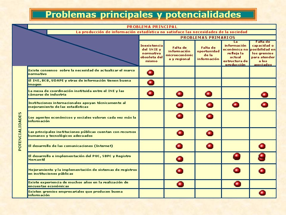 Problemas principales y potencialidades