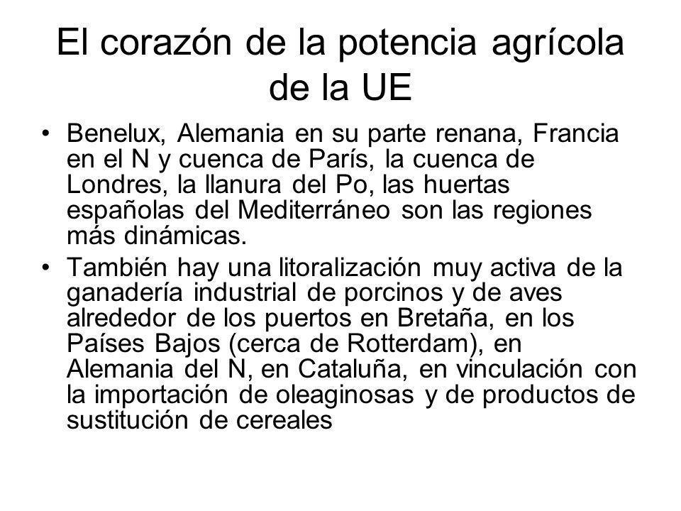 El corazón de la potencia agrícola de la UE Benelux, Alemania en su parte renana, Francia en el N y cuenca de París, la cuenca de Londres, la llanura