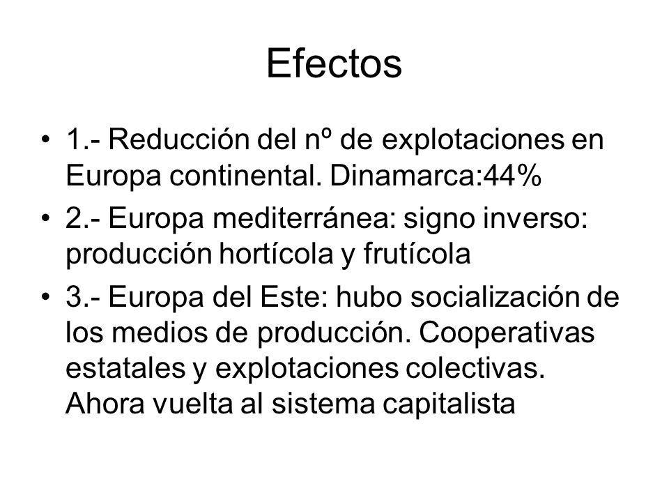 Efectos 1.- Reducción del nº de explotaciones en Europa continental. Dinamarca:44% 2.- Europa mediterránea: signo inverso: producción hortícola y frut