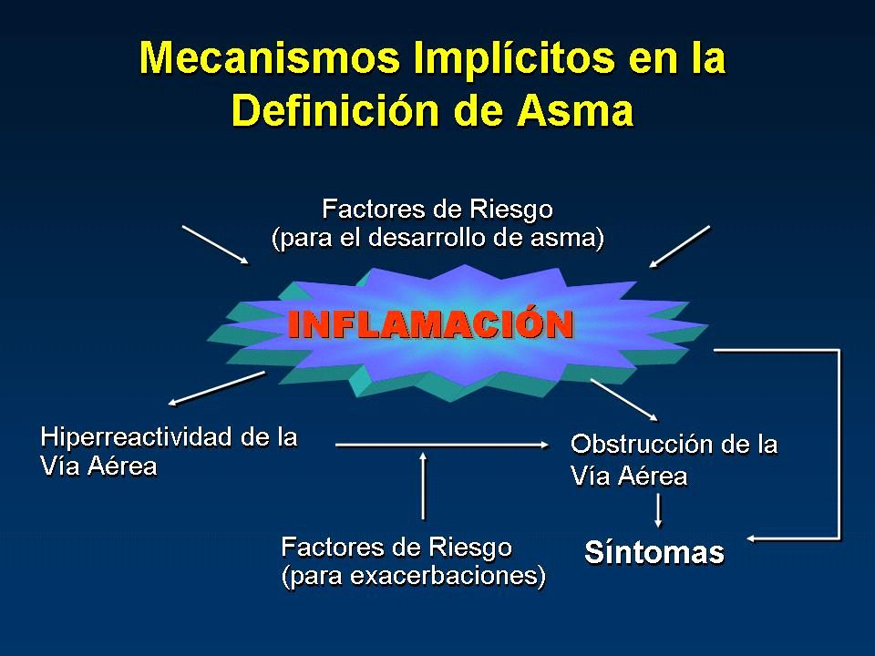 Rol de la IgE en la Inflamación Primera Exposición al Alergeno Célula Presentadora de Antigeno Célula T Célula B Plasmocito IgE Mastocito Segunda Exposición al Alergeno IgE entrecruzada por Alergeno Degranulación del mastocito Síntomas & Exacerbación de Asma Histamina Leucotrienos Prostaglandinas Citoquinas IL-4, IL-13