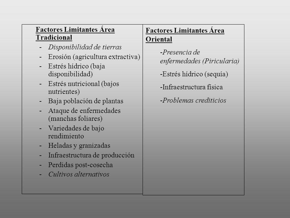 Factores Limitantes Área Tradicional -Disponibilidad de tierras -Erosión (agricultura extractiva) -Estrés hídrico (baja disponibilidad) -Estrés nutric