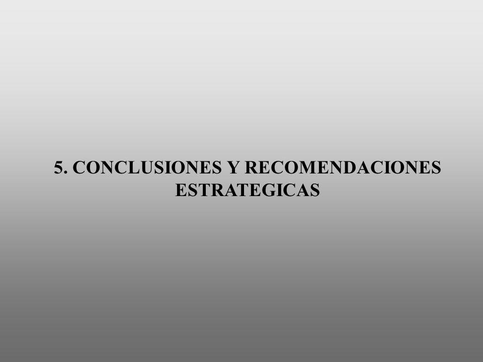 5. CONCLUSIONES Y RECOMENDACIONES ESTRATEGICAS