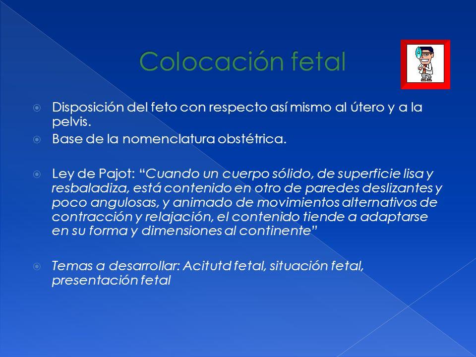 Disposición del feto con respecto así mismo al útero y a la pelvis. Base de la nomenclatura obstétrica. Ley de Pajot: Cuando un cuerpo sólido, de supe