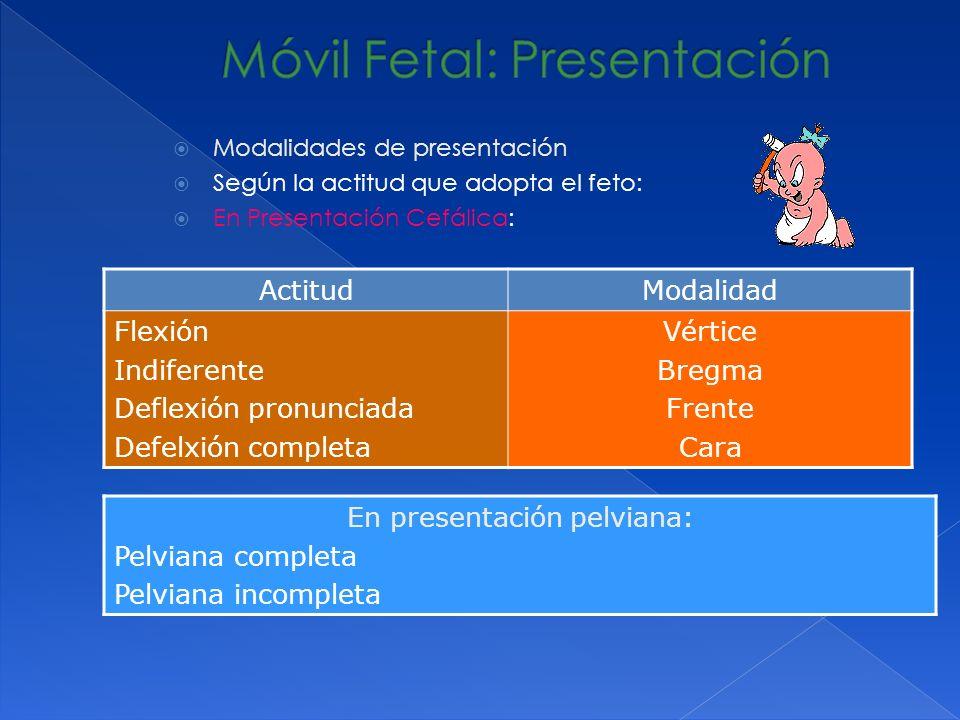 Modalidades de presentación Según la actitud que adopta el feto: En Presentación Cefálica: ActitudModalidad Flexión Indiferente Deflexión pronunciada