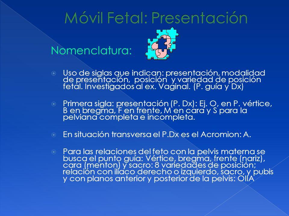 Nomenclatura: Uso de siglas que indican: presentación, modalidad de presentación, posición y variedad de posición fetal. Investigados al ex. Vaginal.