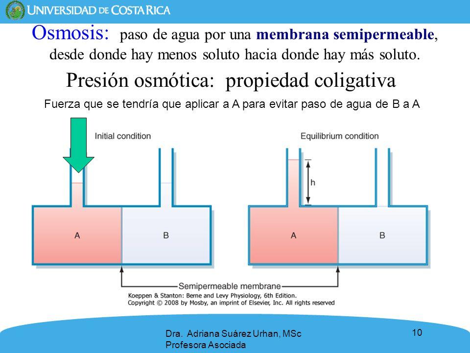 10 Presión osmótica: propiedad coligativa Osmosis: paso de agua por una membrana semipermeable, desde donde hay menos soluto hacia donde hay más solut