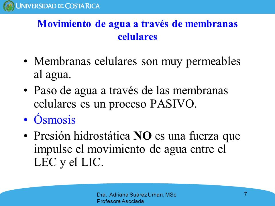 7 Movimiento de agua a través de membranas celulares Membranas celulares son muy permeables al agua. Paso de agua a través de las membranas celulares