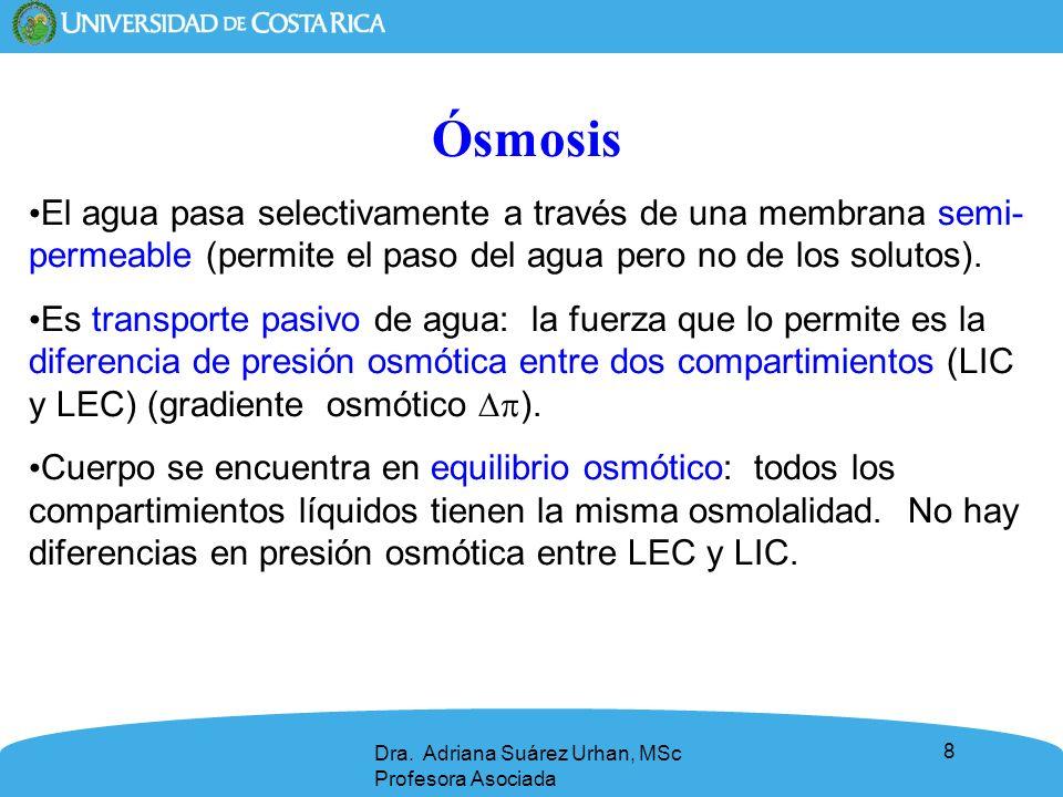 9 Presión hidrostática Presión= fuerza/área.