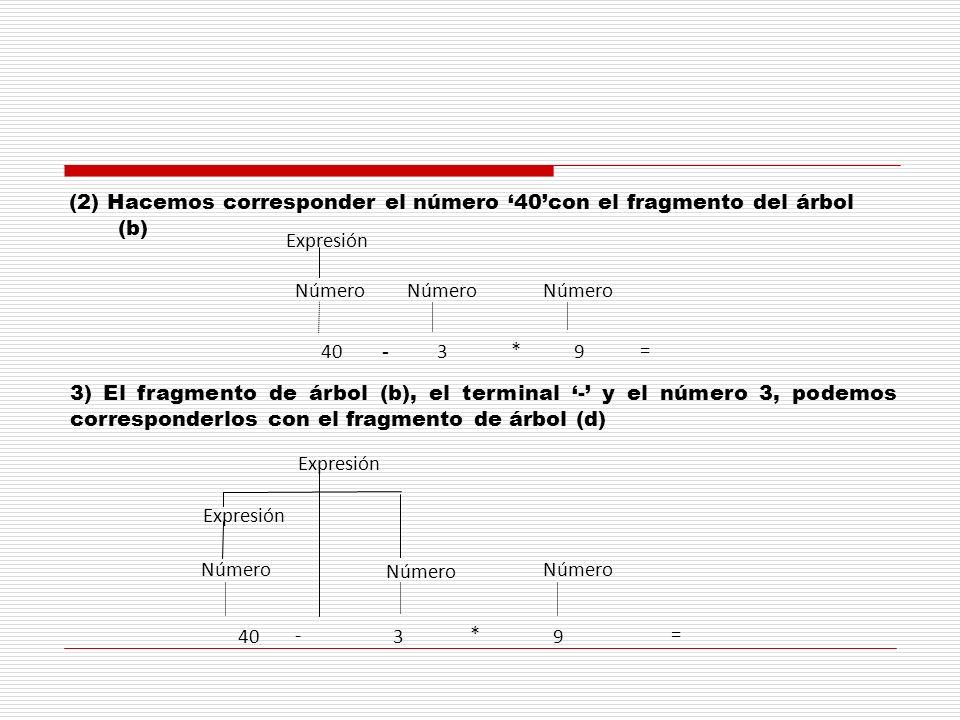 (2) Hacemos corresponder el número 40con el fragmento del árbol (b) Número 4039 Número * - = Expresión 3) El fragmento de árbol (b), el terminal - y e