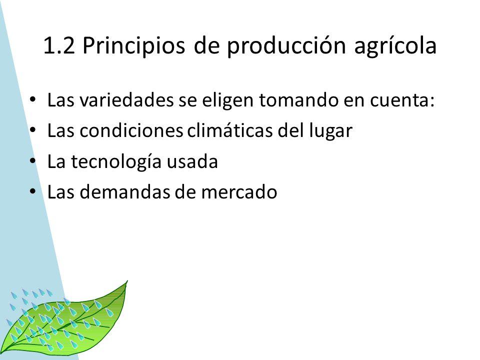1.2 Principios de producción agrícola Las variedades se eligen tomando en cuenta: Las condiciones climáticas del lugar La tecnología usada Las demanda