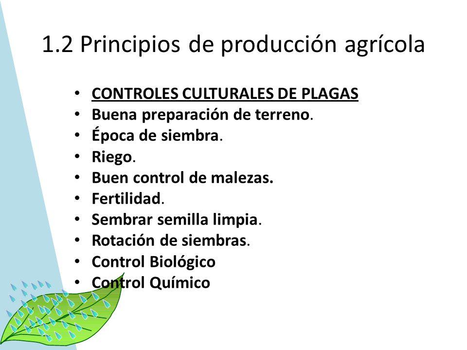 1.2 Principios de producción agrícola CONTROLES CULTURALES DE PLAGAS Buena preparación de terreno. Época de siembra. Riego. Buen control de malezas. F