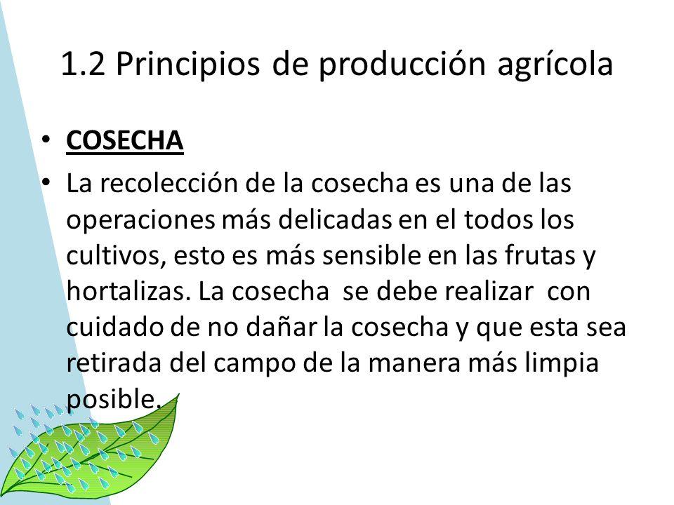 1.2 Principios de producción agrícola COSECHA La recolección de la cosecha es una de las operaciones más delicadas en el todos los cultivos, esto es m