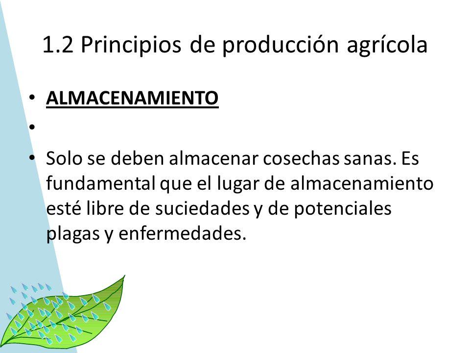 1.2 Principios de producción agrícola ALMACENAMIENTO Solo se deben almacenar cosechas sanas. Es fundamental que el lugar de almacenamiento esté libre