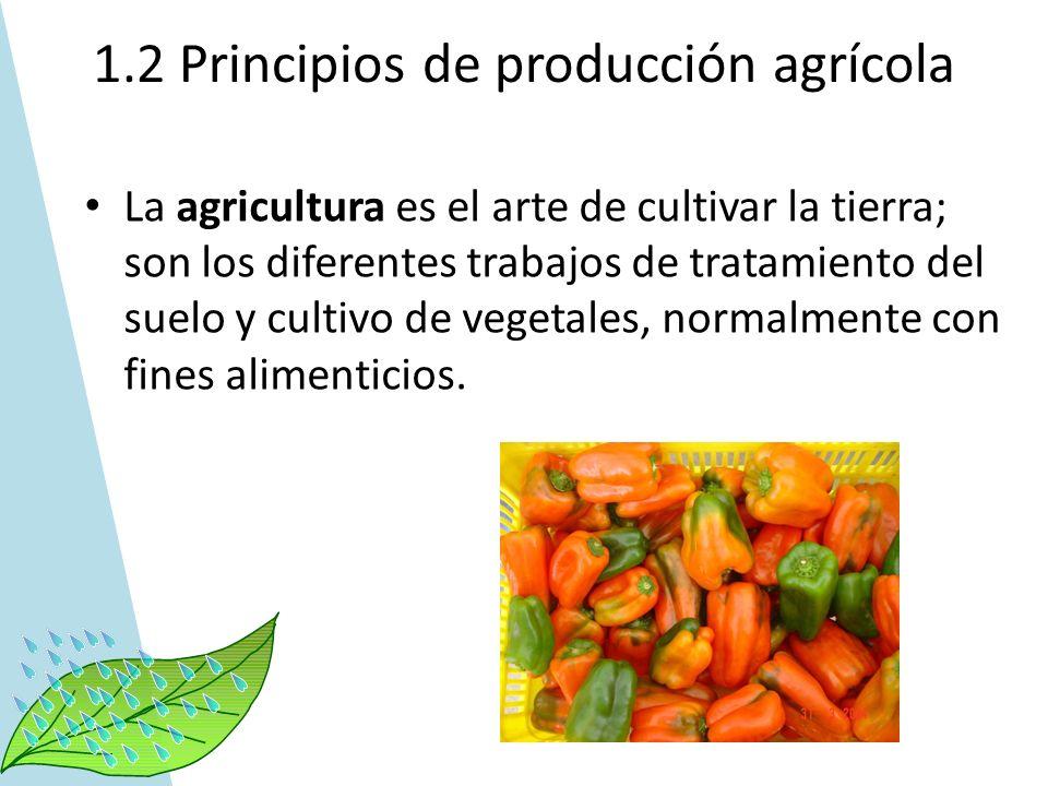La agricultura es el arte de cultivar la tierra; son los diferentes trabajos de tratamiento del suelo y cultivo de vegetales, normalmente con fines al
