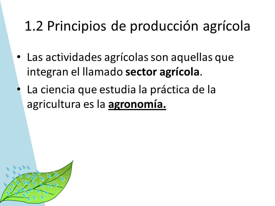 1.2 Principios de producción agrícola Las actividades agrícolas son aquellas que integran el llamado sector agrícola. La ciencia que estudia la prácti