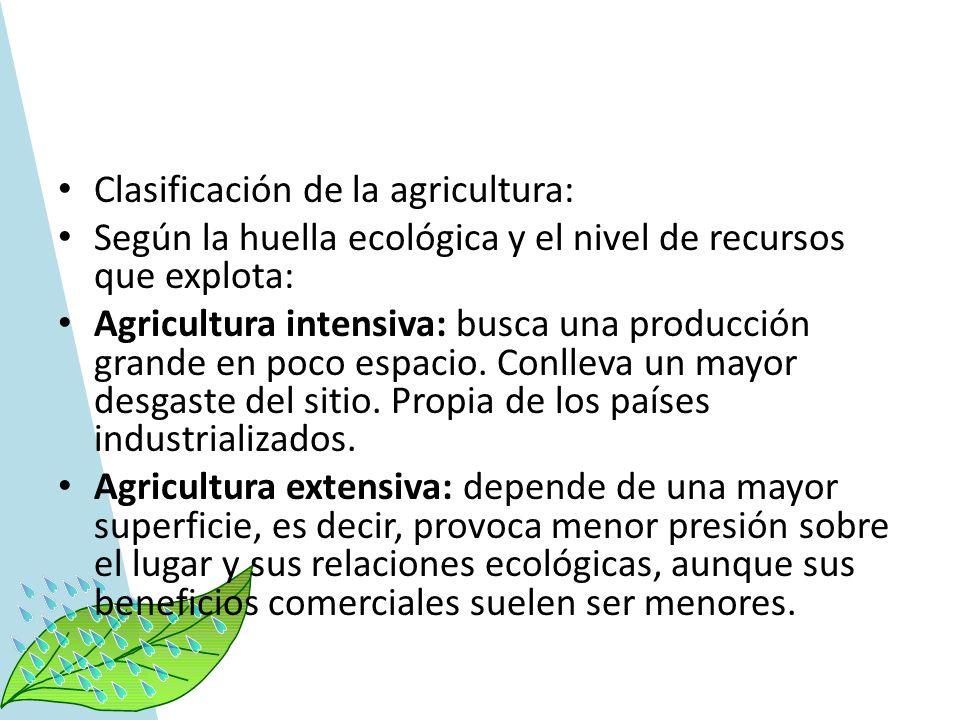 Clasificación de la agricultura: Según la huella ecológica y el nivel de recursos que explota: Agricultura intensiva: busca una producción grande en p