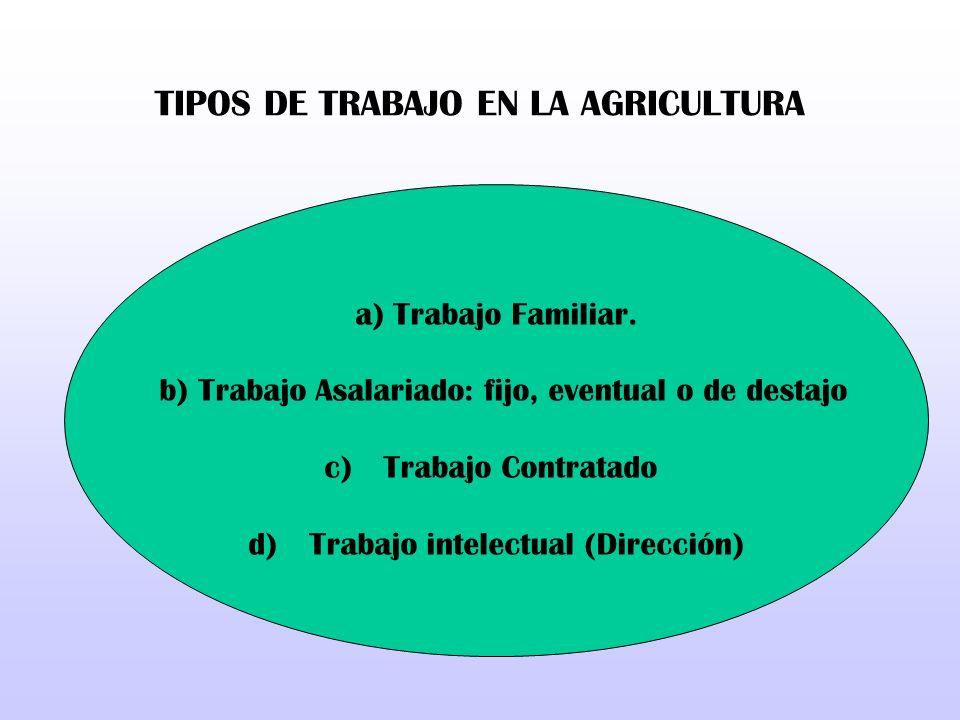 TIPOS DE TRABAJO EN LA AGRICULTURA a) Trabajo Familiar. b) Trabajo Asalariado: fijo, eventual o de destajo c) Trabajo Contratado d) Trabajo intelectua