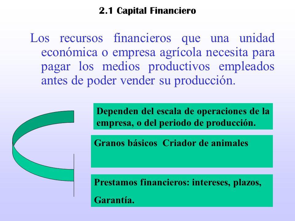 2.1 Capital Financiero Los recursos financieros que una unidad económica o empresa agrícola necesita para pagar los medios productivos empleados antes