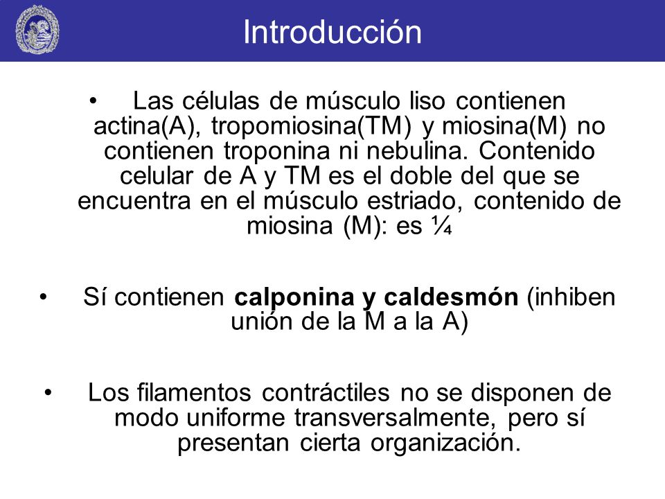 Introducción Las células de músculo liso contienen actina(A), tropomiosina(TM) y miosina(M) no contienen troponina ni nebulina. Contenido celular de A
