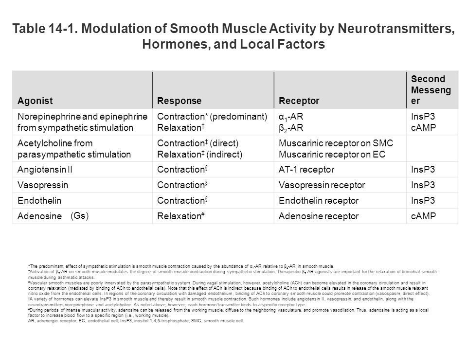 Table 14-1. Modulation of Smooth Muscle Activity by Neurotransmitters, Hormones, and Local Factors AgonistResponseReceptor Second Messeng er Norepinep