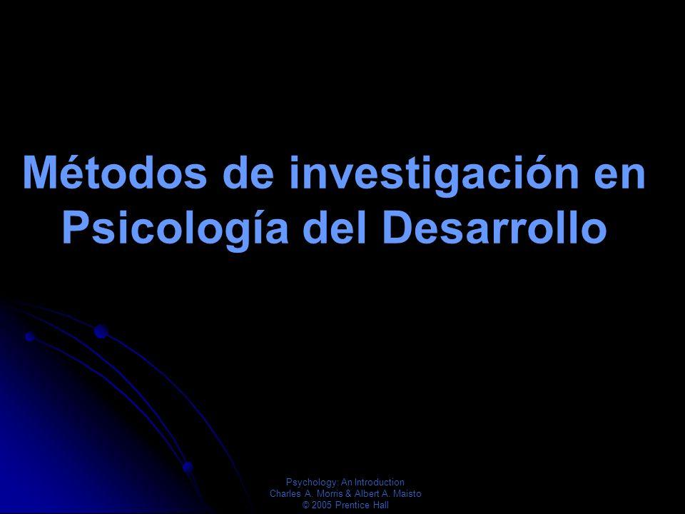 Psychology: An Introduction Charles A. Morris & Albert A. Maisto © 2005 Prentice Hall Adultez