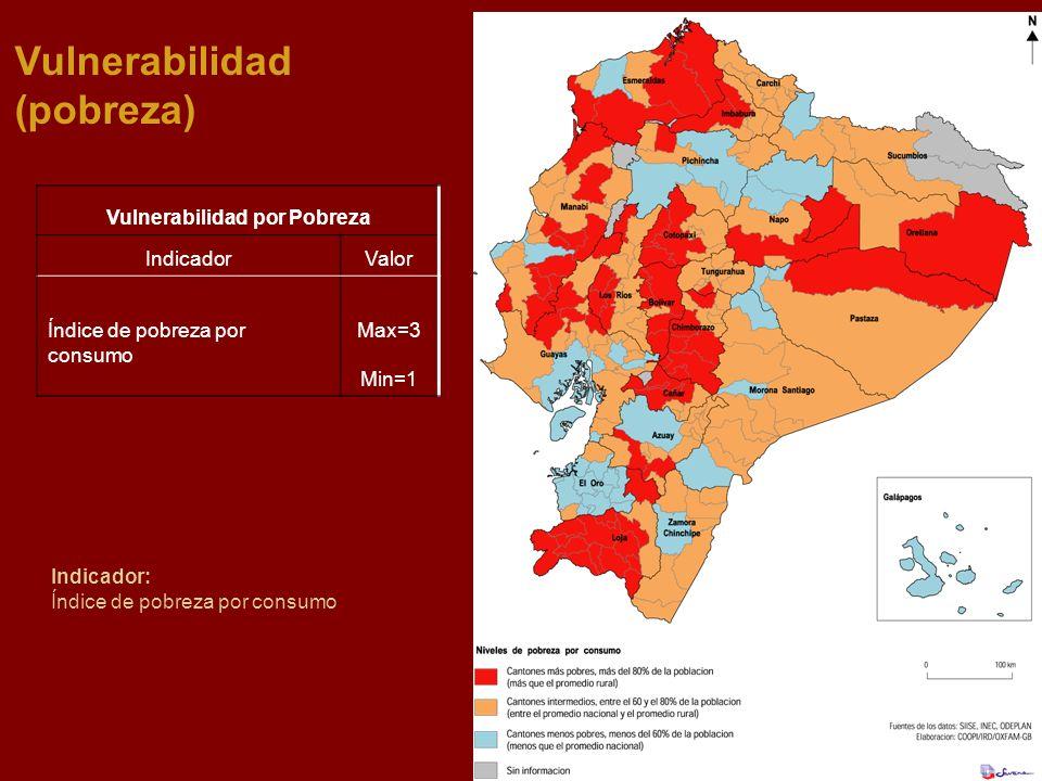 Vulnerabilidad (pobreza) Indicador: Índice de pobreza por consumo Vulnerabilidad por Pobreza IndicadorValor Índice de pobreza por consumo Max=3 Min=1